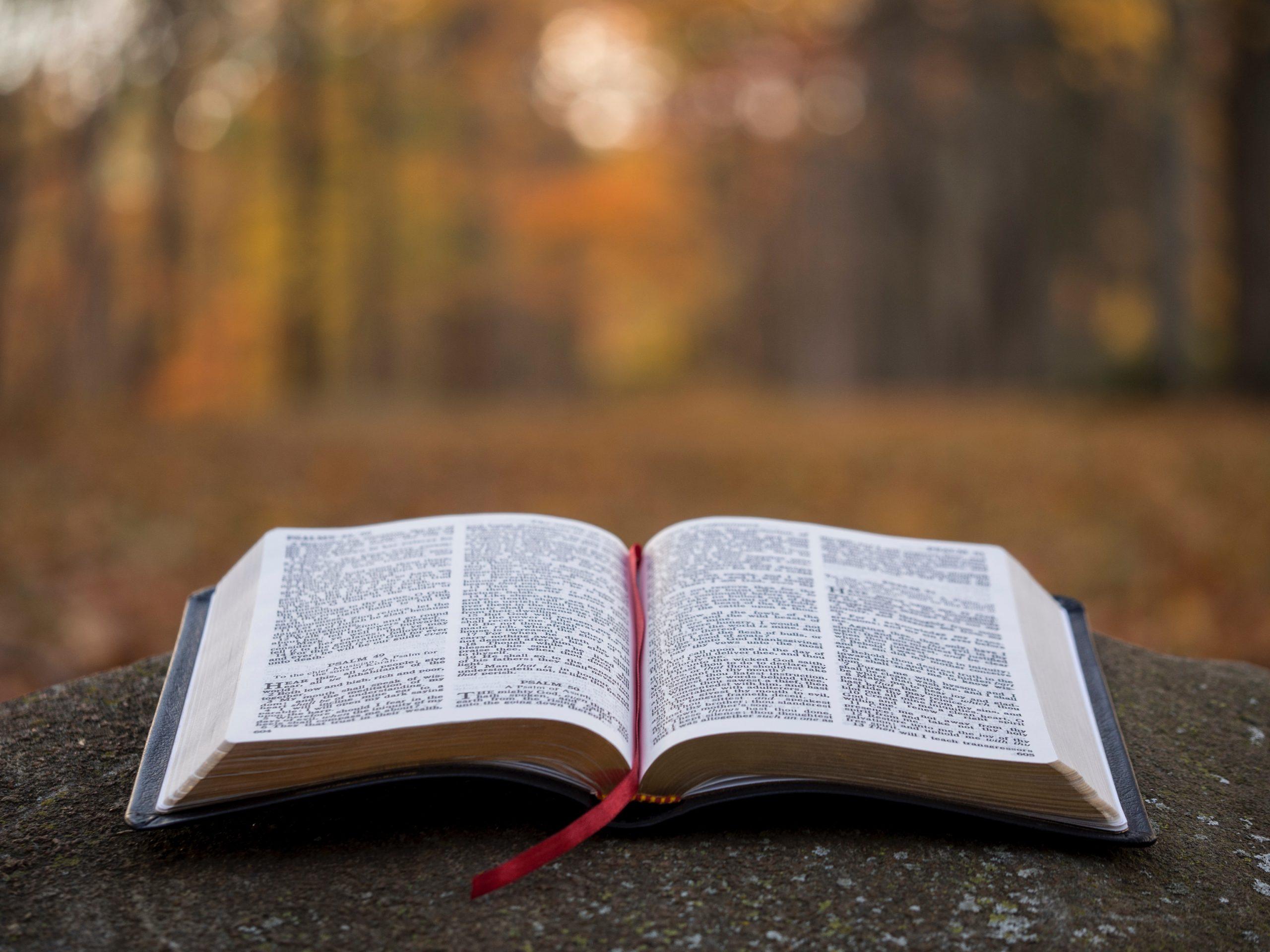 Lire la bible chez soi